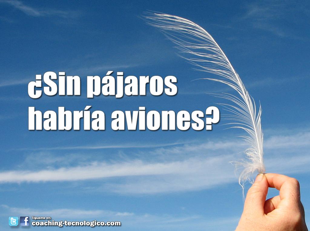 sin_pajaros_habria_aviones